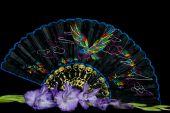 pic of gladiola  - Lavender gladiola with oriental silk fan on black - JPG
