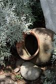 Clay Pot in a Garden