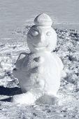 Cute Well Formed Winter Snowman
