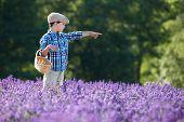 Cute little boy with basket in lavender field