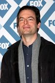 LOS ANGELES - JAN 13:  Justin Kirk at the FOX TCA Winter 2014 Party at Langham Huntington Hotel on J