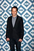 LOS ANGELES - JAN 13:  Matthew Rhys at the FOX TCA Winter 2014 Party at Langham Huntington Hotel on