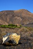 picture of volcanic  - volcanic timanfaya rock stone sky hill and summer in los volcanes lanzarote spain plant flower bush - JPG