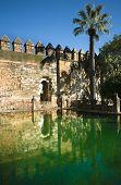 Alcazar Pond
