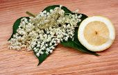 pic of elderberry  - Health elderberry flowers and lemon on a wooden table - JPG