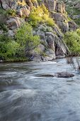 foto of collins  - North Fork of Cache la Poudre River with springtime flow in Eagle Nest Open Space in northern Colorado at Livermore near Fort Collins - JPG