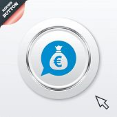 Money bag sign icon. Euro EUR currency.