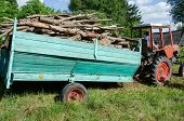 Tractor Trailer Loaded With Tree Firewood Logs