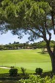 Green Golf Course In Vilamoura