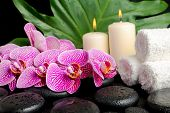Spa Setting Of Twig Stripped Violet Orchid (phalaenopsis ), Zen Stones With Drops,  Stacked White To