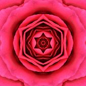 pic of kaleidoscope  - Red Mandala Concentric Rose Flower Kaleidoscope Center - JPG
