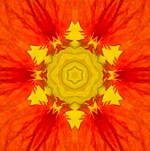 stock photo of kaleidoscope  - Red Mandala Concentric Flower Kaleidoscope with Yellow Center - JPG