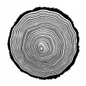 Tree rings background illustration
