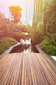 Wooden boardwalk overlooking a beautiful pond in the early morning