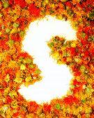Flowers letter S.
