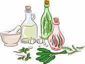 Illustration Featuring Herbs Being Made Into Oils and Other By-Products