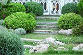 Beautiful landscaping in yard