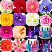 Perfume collage