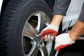 picture of car repair shop  - Car mechanic changing tire in professional car repair service  - JPG