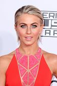 LOS ANGELES - NOV 23:  Julianne Hough at the 2014 American Music Awards - Arrivals at the Nokia Theater on November 23, 2014 in Los Angeles, CA