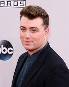 LOS ANGELES - NOV 23:  Sam Smith at the 2014 American Music Awards - Arrivals at the Nokia Theater on November 23, 2014 in Los Angeles, CA