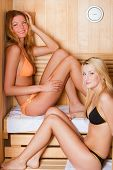 Two Women In A Dry Sauna