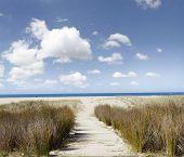 Trail leading through sand to beach