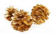 Gold Plated Pine Cones Macro Isolated