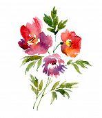 Watercolor bouquet of peonies. Vector illustration