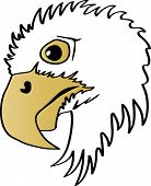 Illustration of a side face eagle head