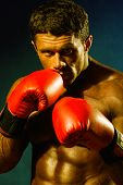 Strong Athletic Man In Boxing Gloves.