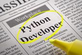 pic of pythons  - Python Developer Vacancy in Newspaper - JPG