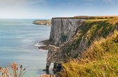 foto of cliffs  - Bempton Cliffs Yorkshire England showing rugged coastline of chalk cliffs - JPG