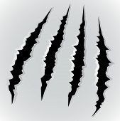 pic of monsters  - Vector illustration of monster claw scratch on grey background - JPG