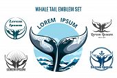 pic of whale-tail  - Whale tail logo or emblem set - JPG