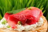 image of scallion  - Sandwich with gravlax parsley scallion capers and cream cheese on spring grass background closeup macro - JPG