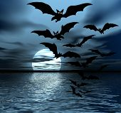 Black Night. Moon And Bats