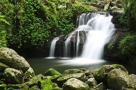 foto of nationalism  - World heritage area Lamington National Park - JPG