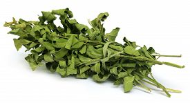 picture of moringa oleifera  - Close up of Dried moringa leaves over white background - JPG
