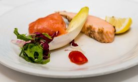 picture of endive  - A piece of braised salmon on an appetizer plate with belgian endive - JPG