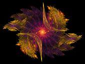 Symmetric Star