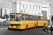 Постер, плакат: Желтый автобус