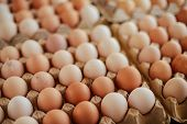 Close Up Of  Eggs In A Basket. Top View Of Eggs In Bowl. Brown E poster