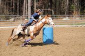image of barrel racing  - A young woman turns around a barrel and races to the finish line - JPG