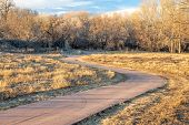 windy bike trail in late fall or winter scenery along the Poudre River in northern Colorado poster