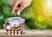 Man Hand Putting Coin Into Piggy Bank Closeup With Save Word For Save Money Concept poster