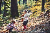 Active Children Play Games On Fresh Air In Autumn Forest. Active Rest And Kids Activity Outdoor. poster