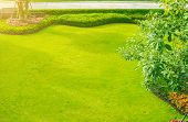 Green Lawn, The Front Lawn For Background poster