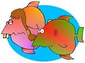 Redneck Fish