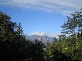 Mountain With Cloud Top And Trees